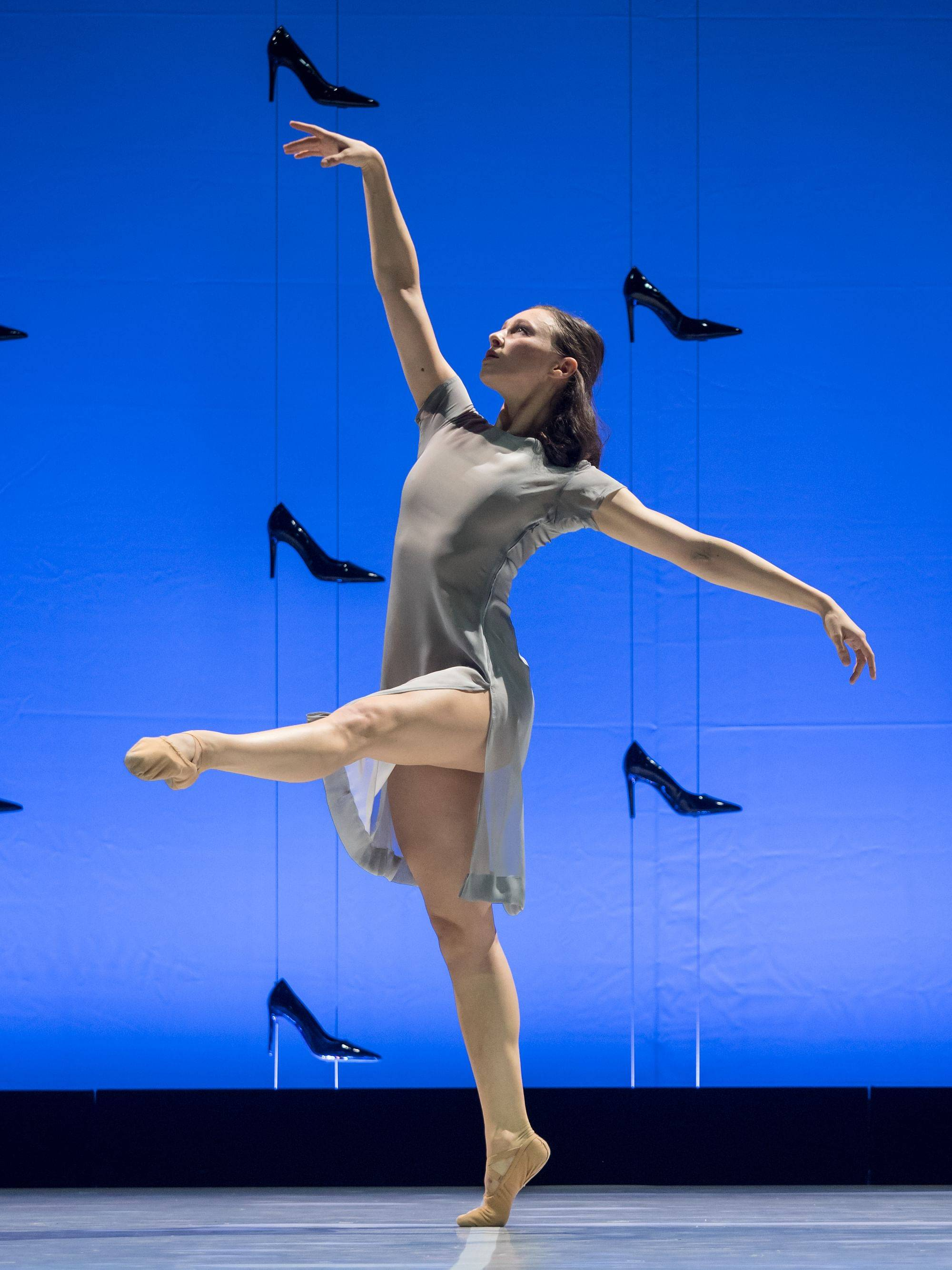 What Is This Plant Is It A Weed Found It It S A Wooly: Cendrillon (Aschenputtel) (Ballet By Thierry Malandain
